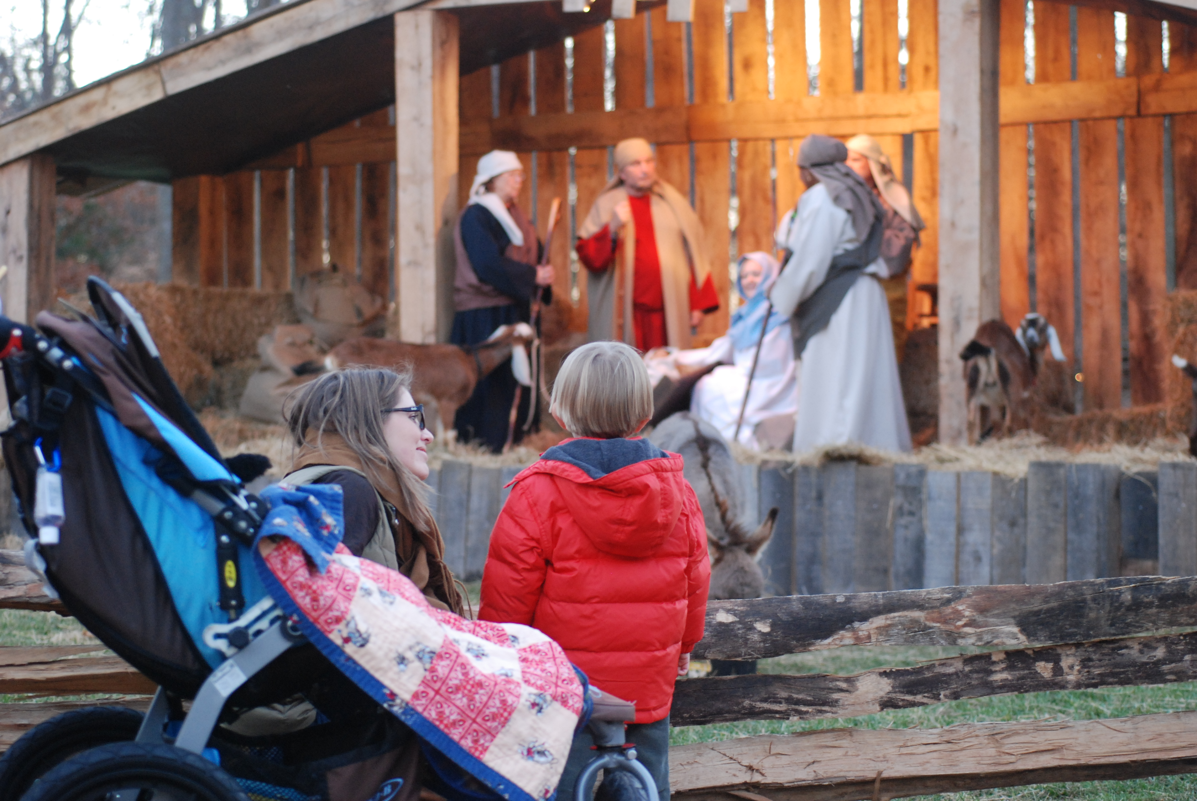LIVE Nativity Scene at Billy Graham Library